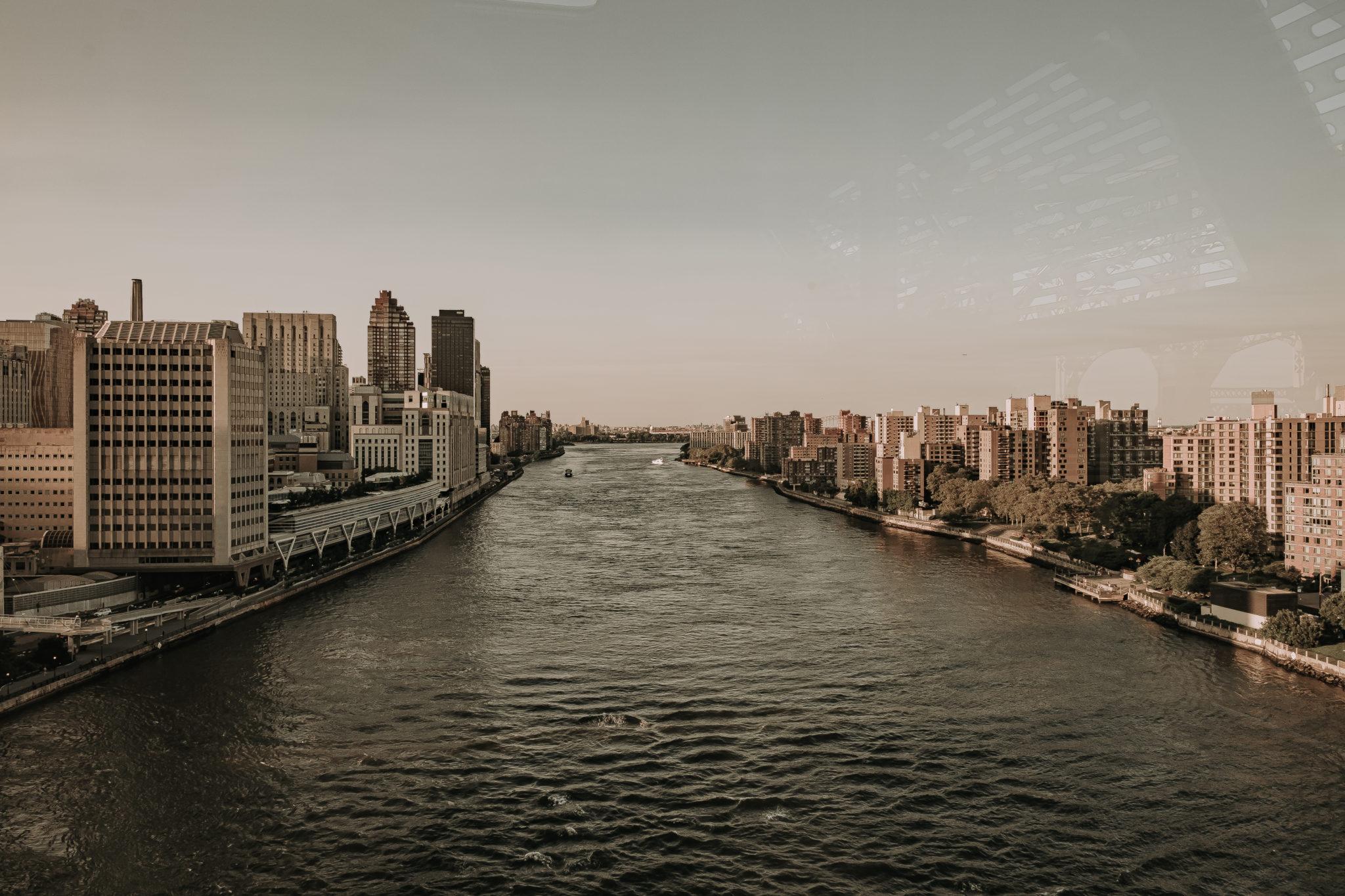 NY19-9095