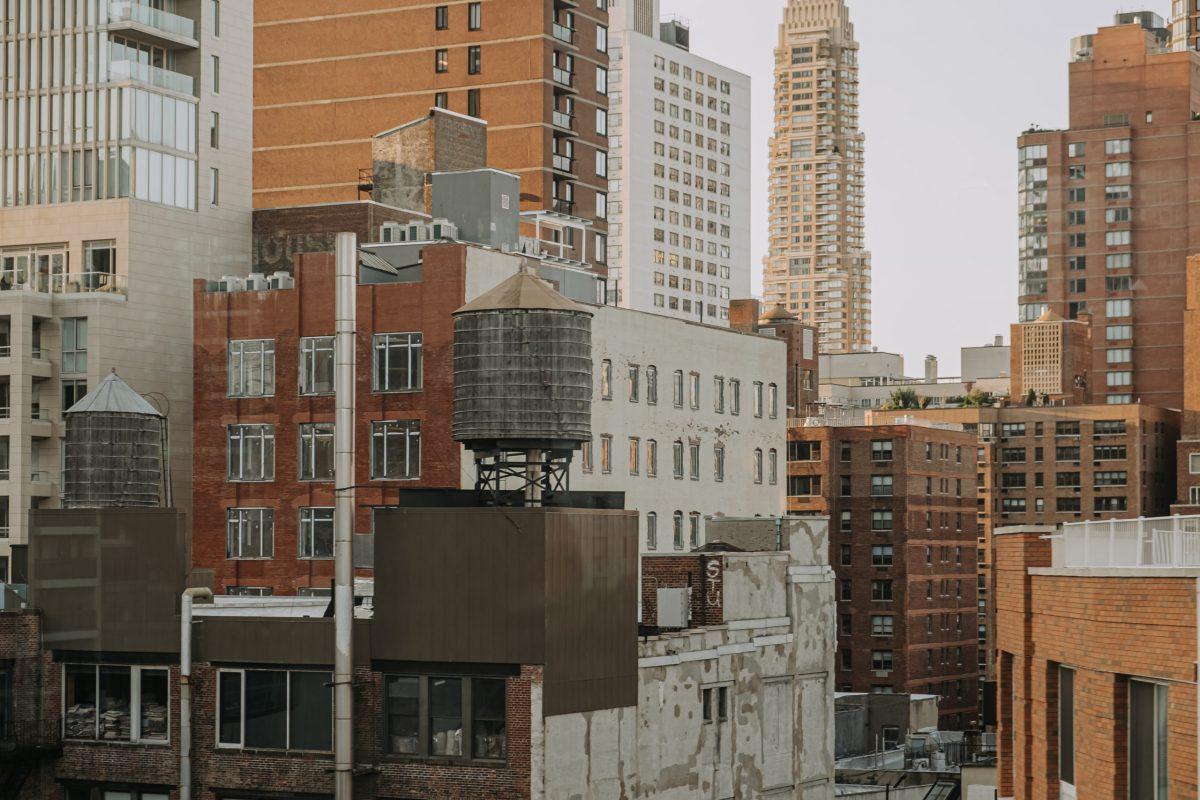 NY19-9113